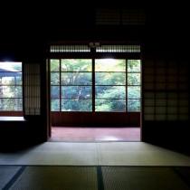 和室から庭を眺めて