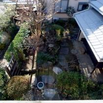2階から庭を